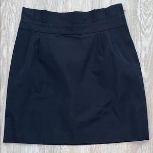 Kate Spade navy skirt 10 skirt the rules lined
